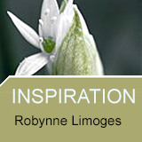 Inernation Photo Competitions - Inspiration by Robert Limoge